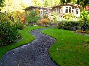 Co posadzić w przydomowym ogródku